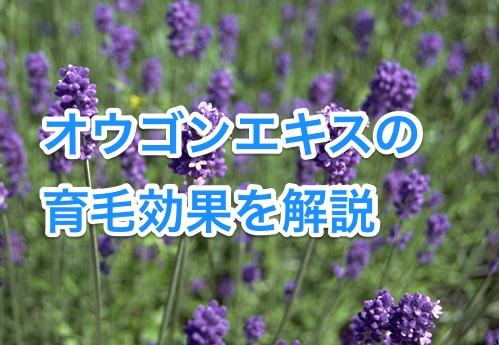 ougonekisu1