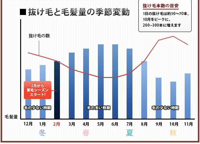 抜け毛グラフ