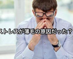 薄毛_ストレス